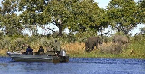 3 days Saadani Boat Safari